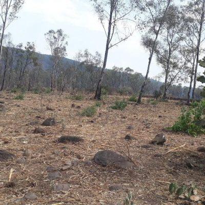 Terrenos en Venta cerca de Presa Cointzio, Morelia, Michoacán.